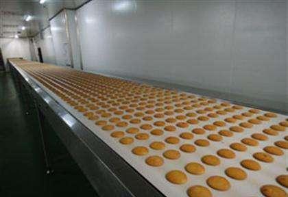 饼干输送带